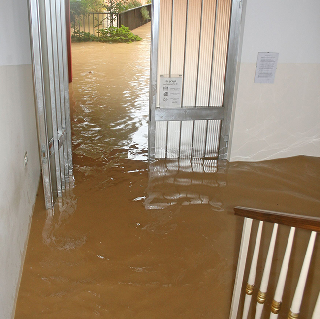 18113815 - entrance and staircase of the house invaded by mud during a flooding of the river