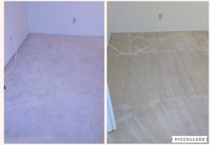 newly cleaned carpet