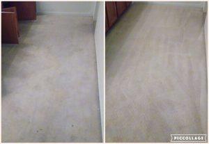 newly clean carpet